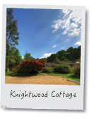 largenewforestcottages