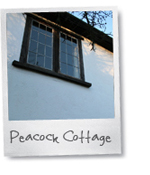 newforestselfcateringcottages