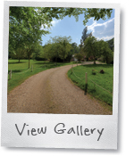Vine cottage image gallery