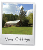 Vine Cottage